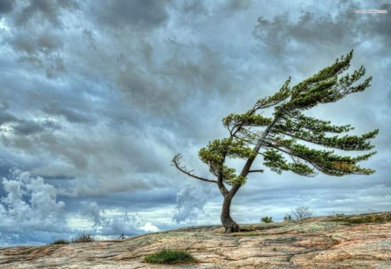 На территории страны ожидается сильный ветер