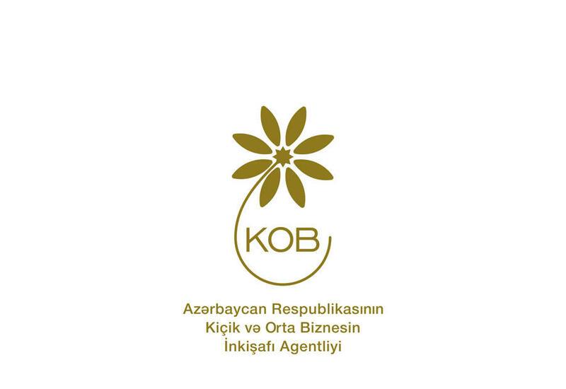 В Агентство по развитию МСБ поступило около 400 обращений для создания бизнеса на освобожденных территориях Азербайджана