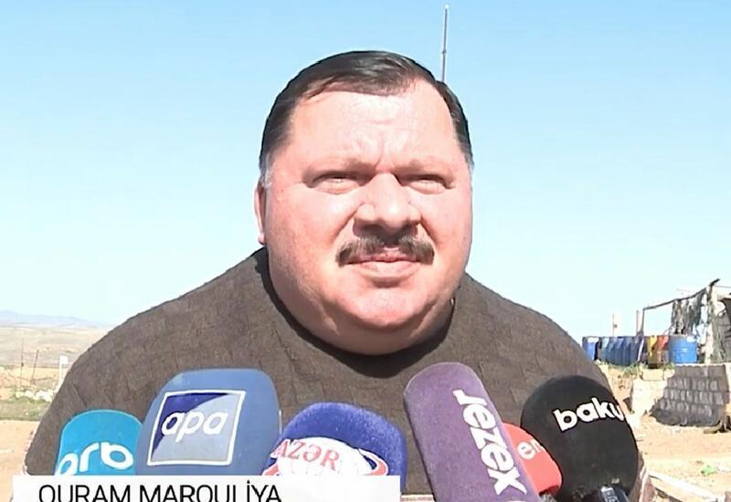 Gürcü tarixçi: Allah işğalçı erməniləri cəzalandırdı