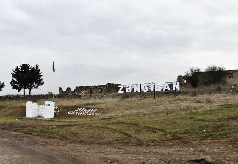 В Зангилане начнется весенняя посадка деревьев