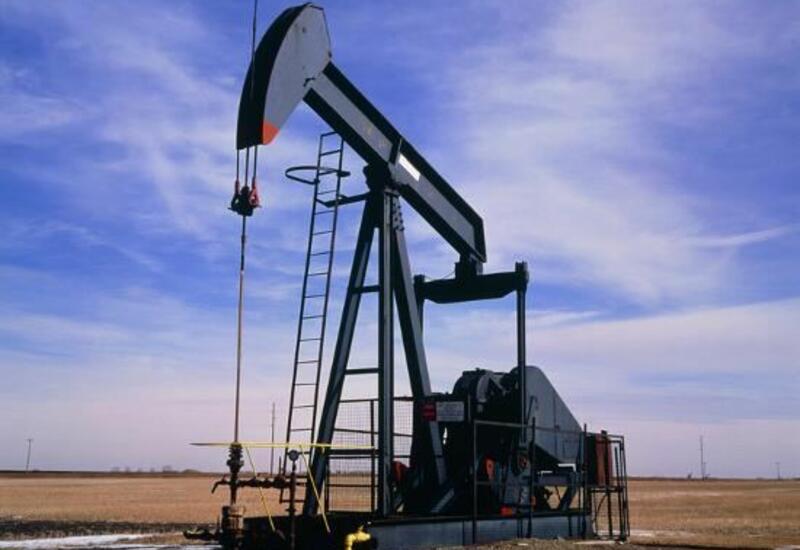 В России сделали неутешительный прогноз по нефти