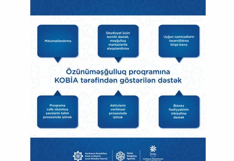 Агентство по развитию МСБ Азербайджана продолжает поддерживать программу самозанятости