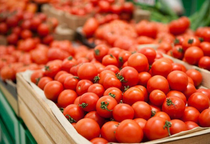 Еще семи предприятиям из Азербайджана разрешили ввозить томаты в Россию