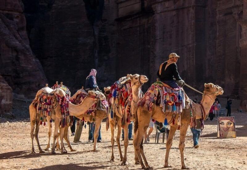 """В Иордании решили создать """"золотую зону"""" без вирусов"""