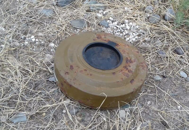 Международные организации обязаны надавить на Армению из-за карт минных полей