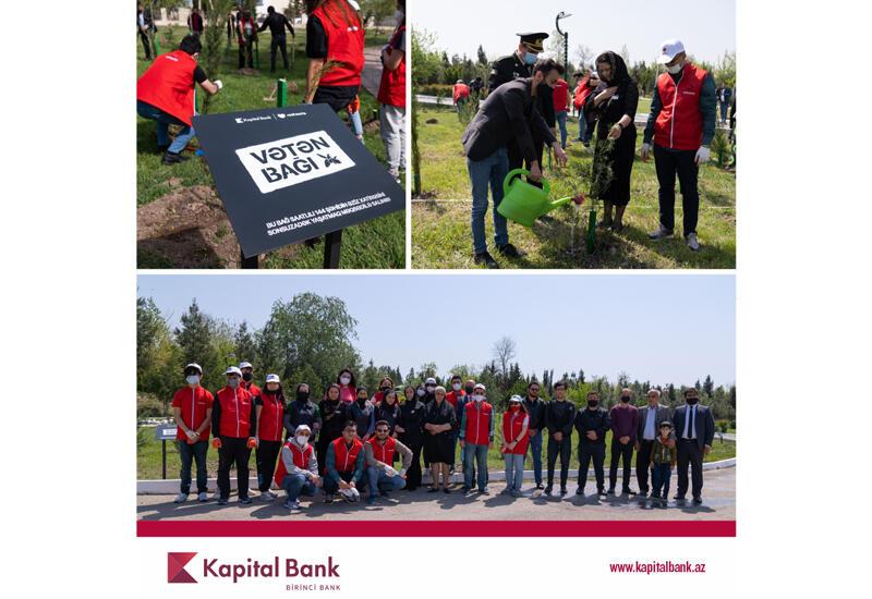 Kapital Bank и Red Hearts посадили деревья в память о шехидах