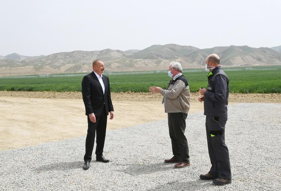 Президент Ильхам Алиев принял участие в презентации агропарка ООО Aqro Dairy в Гаджигабуле