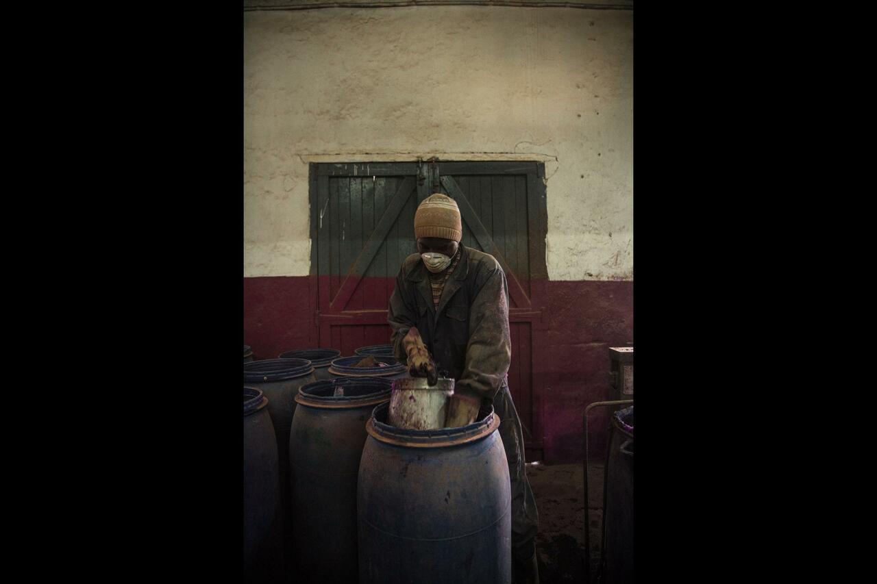 Объявлены победители Sony World Photography Awards