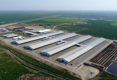 Создание агропарков направлено на обеспечение занятости жителей регионов