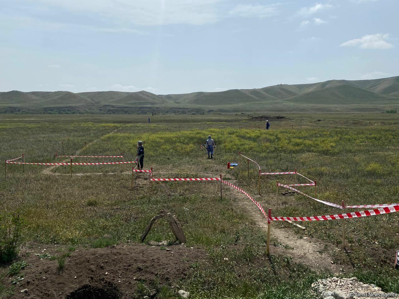 Суговушан и Талышкенд очищаются от мин для строительства ЛЭП