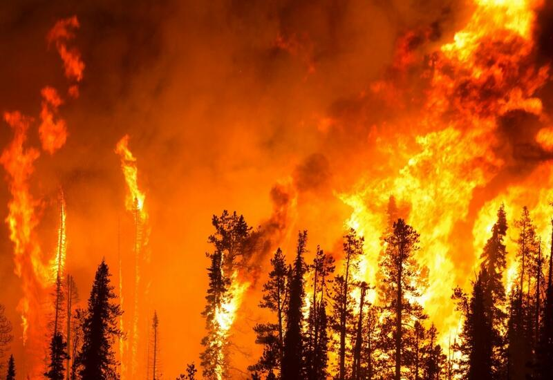 Крупный лесной пожар начался в горах в центре Японии