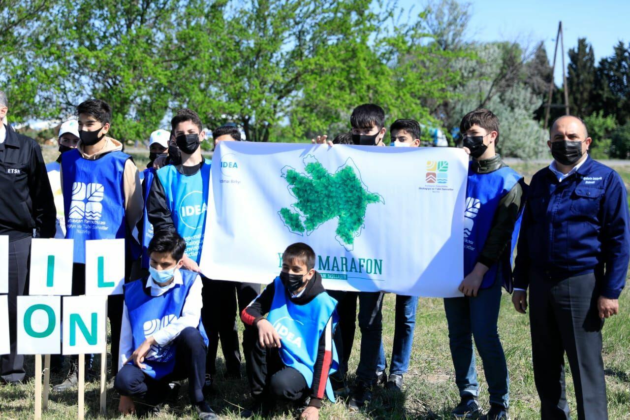 В рамках проекта «Зеленый марафон» посажено 2 тыс. медоносных деревьев