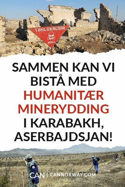 В Норвегии началась информационная кампания против неприемлемого поведения Армении
