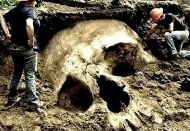 5 доказательств того, что гиганты существуют на самом деле