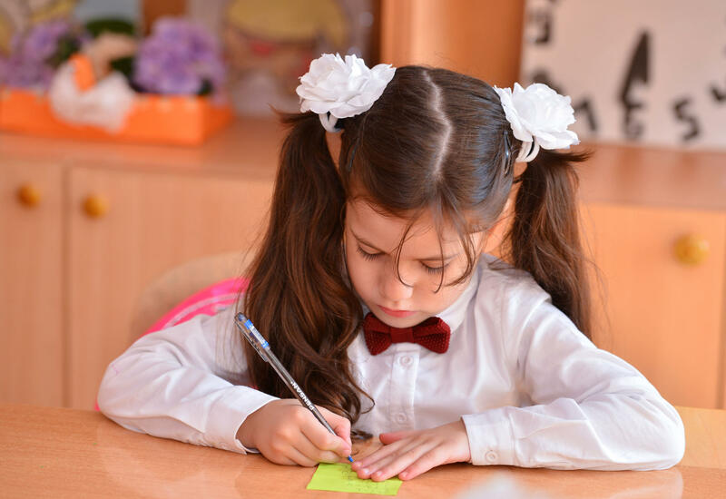 В Азербайджане возобновилась работа портала по приему в I класс
