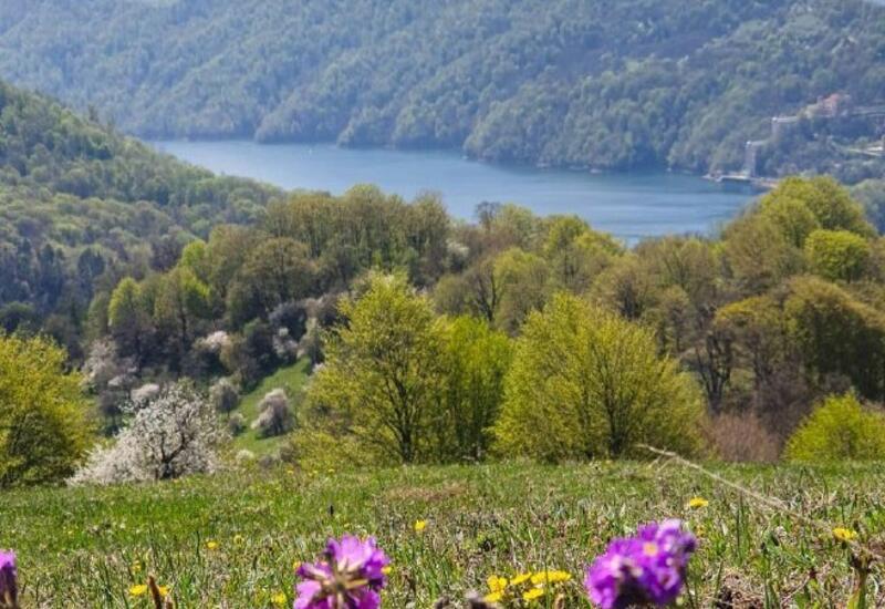 Вид на озеро Гейгель весной