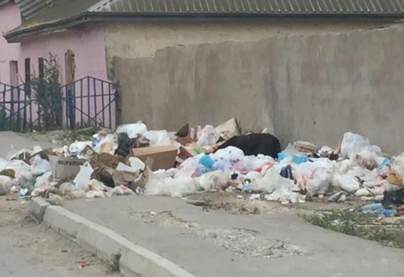 МВД оштрафовало председателя муниципалитета