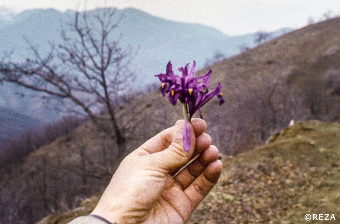 Попрощался с азербайджанцами, защищавшими город голыми руками
