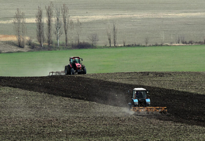 Европа массово скупила российские тракторы и плуги