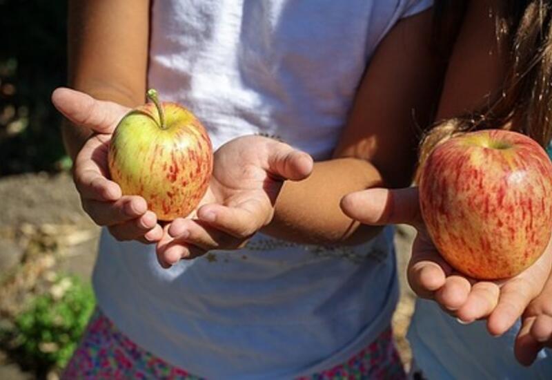 Доктор Комаровский предупредил об опасности фруктов для маленьких детей