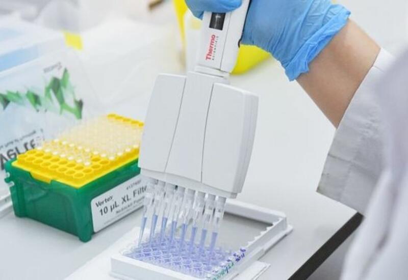 Стало известно, когда может быть зарегистрирована назальная вакцина от COVID-19