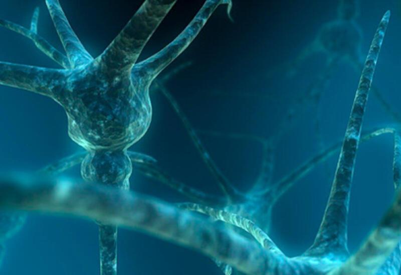Раскрыта тайна смертельной и распространенной болезни мозга