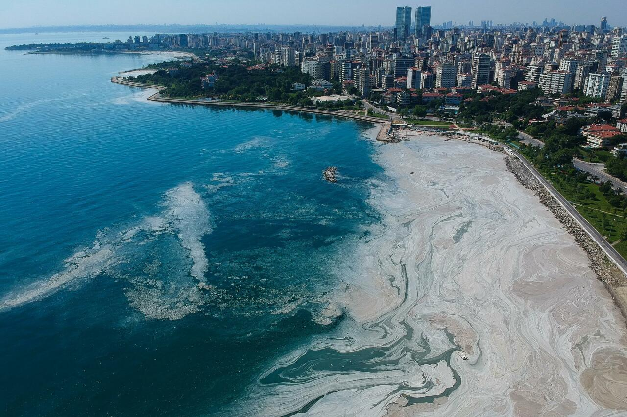 Турция очищает Мраморное море