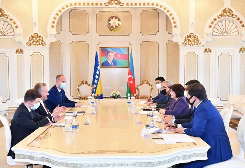 Спикер Милли Меджлиса и глава Палаты народов ПА Боснии и Герцеговины обсудили вопросы, представляющие взаимный интерес