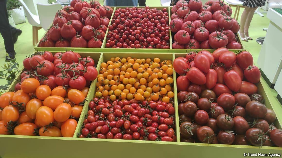 В Баку открылись выставки Caspian Agro и InterFood Azerbaijan-2021