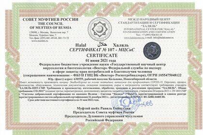 Вторую российскую вакцину признали халяльной
