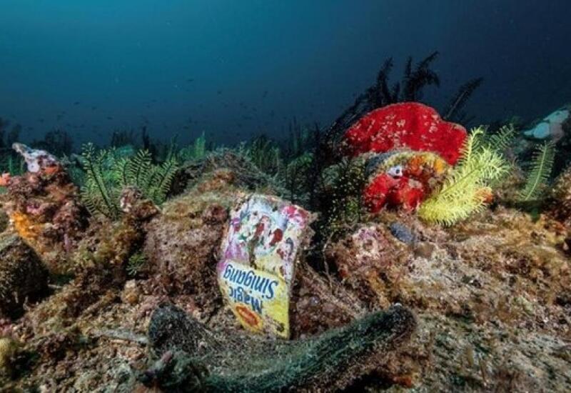 В Португалии с 1 июля запрещены одноразовые пластиковые изделия
