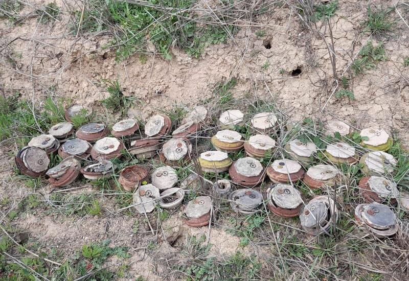 За прошедшую неделю на освобожденных от оккупации территориях обнаружено 149 мин