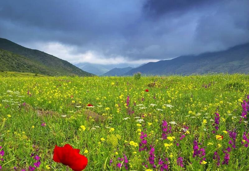 Высокие горы в Шамахы в блоге Лёкина