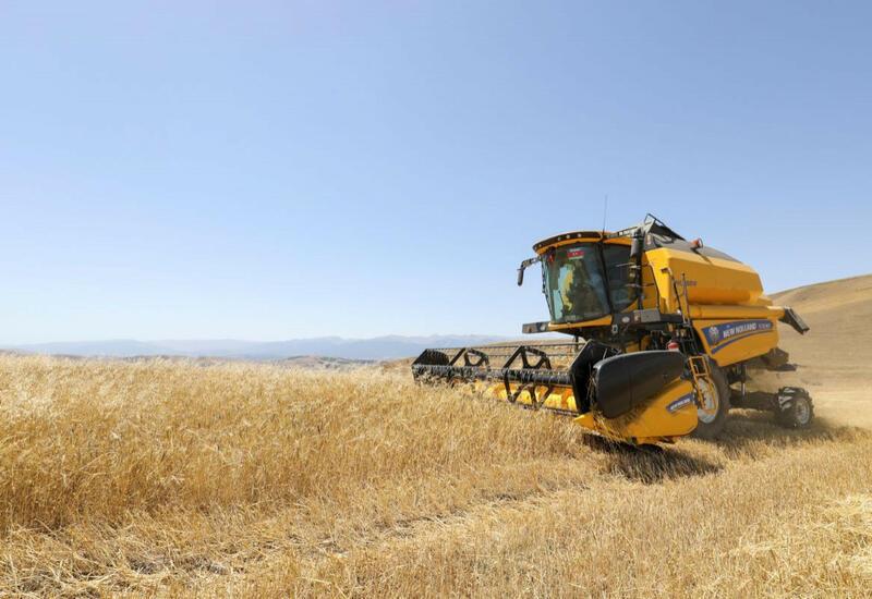 Азербайджанские фермеры получили от государства более 20 миллионов манатов субсидий