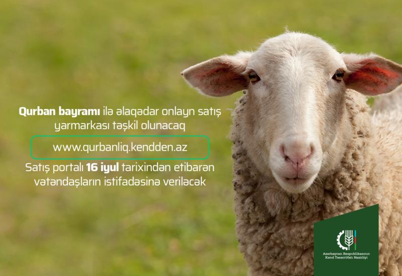 В Азербайджане организуется онлайн ярмарка-продажа жертвенных животных