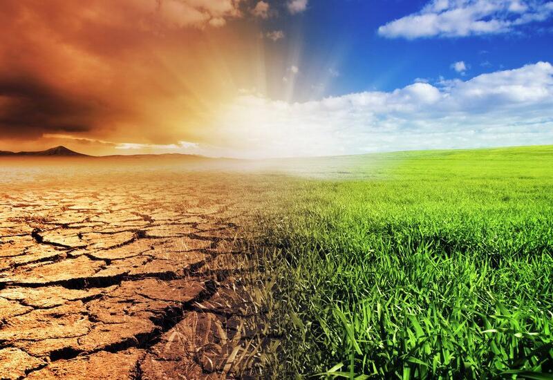 Предсказаны катастрофические последствия изменения климата