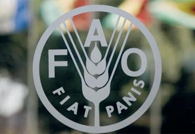 ФАО поддерживает перечень проектов по продвижению местных продуктов питания в Азербайджане