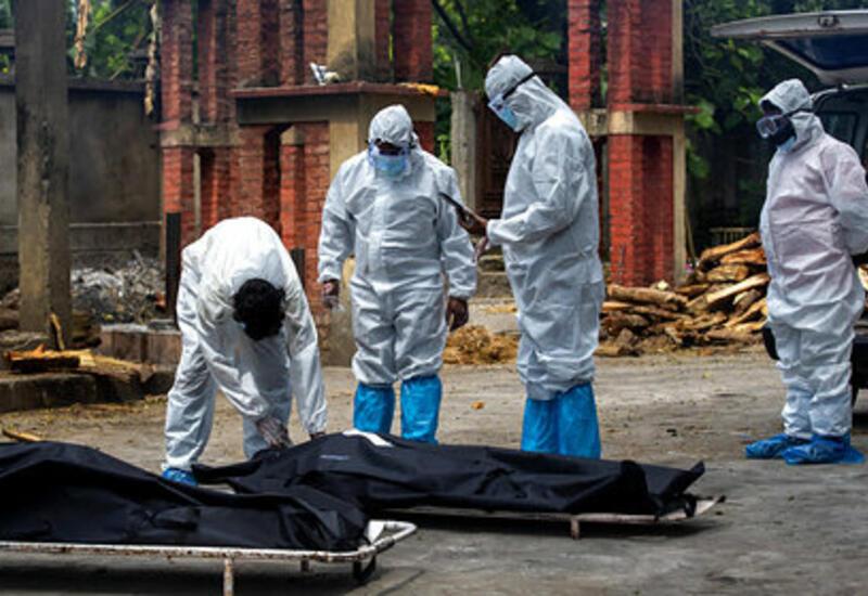 В Индии опровергли обвинения в занижении данных по смертности от коронавируса