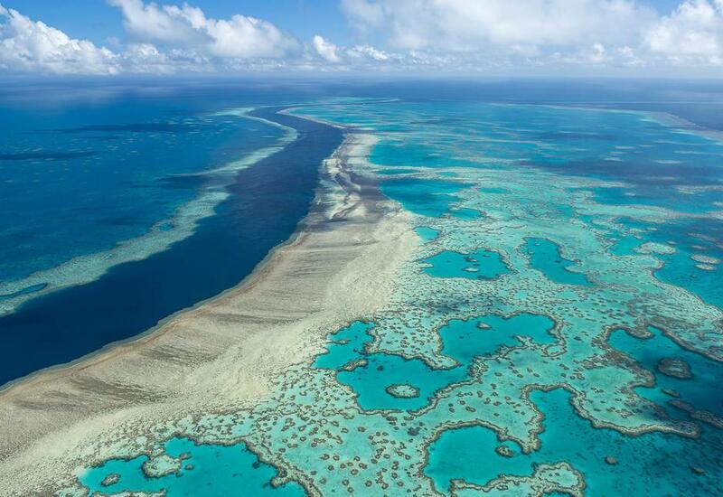 ЮНЕСКО решила не включать Большой Барьерный риф в список находящихся в опасности объектов