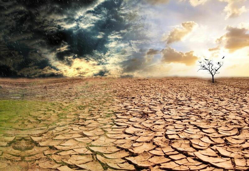 Засуха за полвека убила 650 тысяч человек