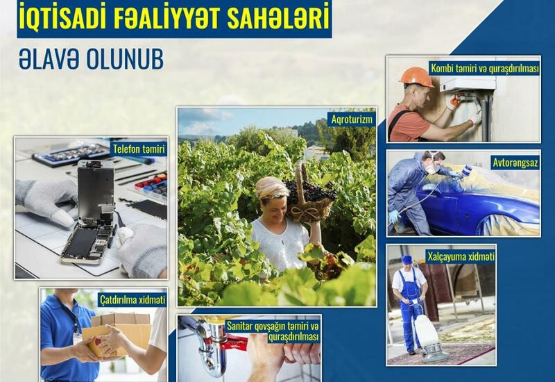 Программа самозанятости в Азербайджане охватила новые сферы деятельности