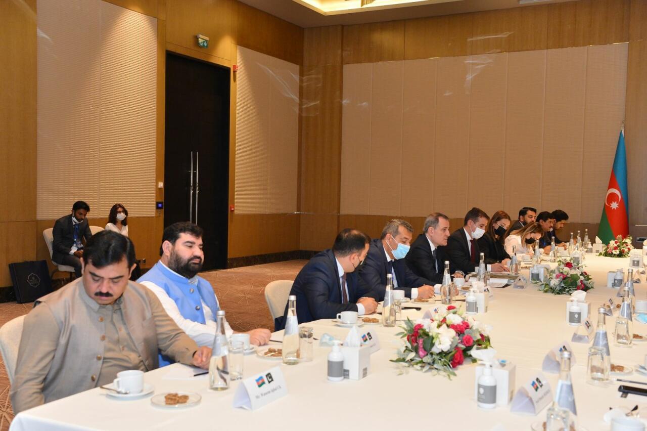 Джейхун Байрамов на переговорах с председателем Нацсобрания Пакистана