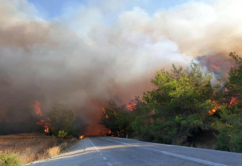 Лесные пожары распространились и на Бодрум