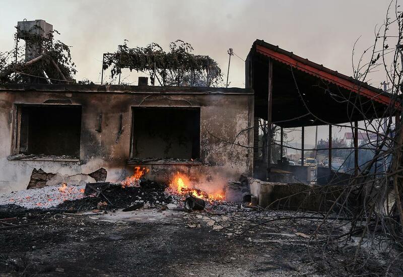 В результате лесных пожаров в Турции пострадали 183 человека
