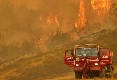 Азербайджан направит в Турцию 500 человек и вертолеты  - для борьбы с пожарами