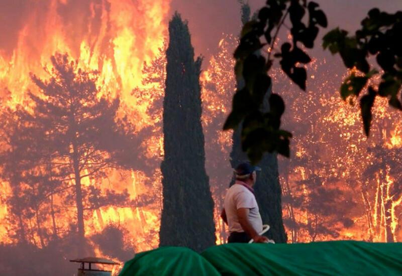 Число жертв лесных пожаров в Турции увеличилось до четырех,