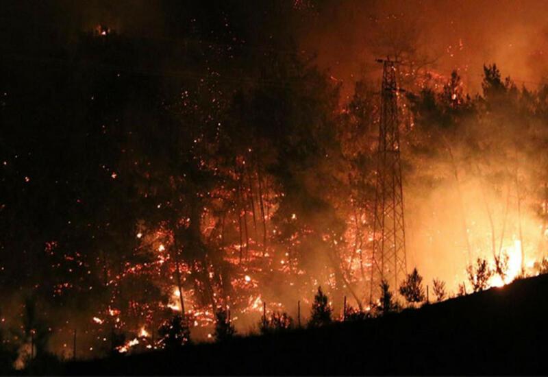 Есть ли азербайджанцы среди погибших и пострадавших в результате пожаров в Турции?