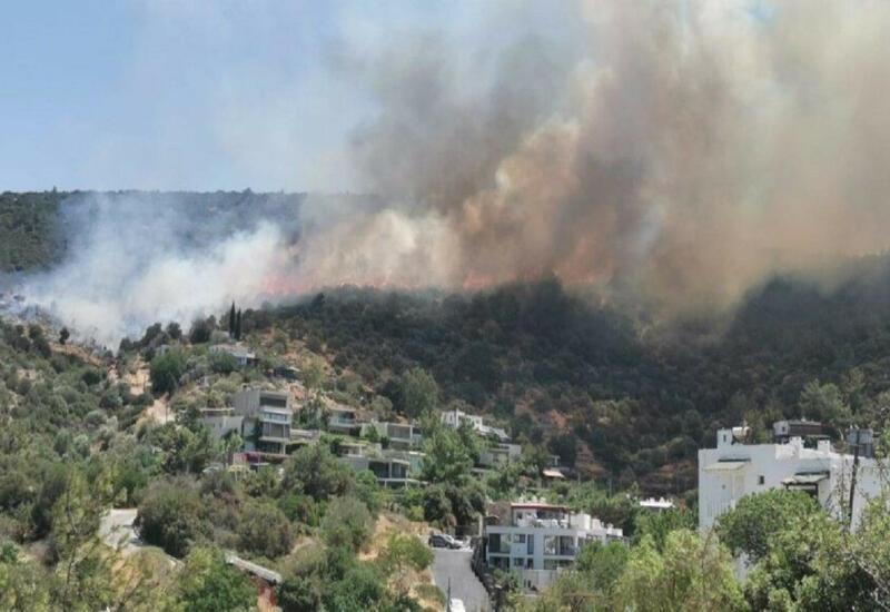 В Бодруме произошел еще один лесной пожар