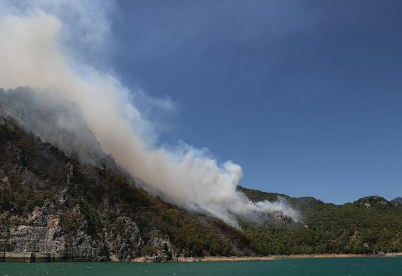 Хорошая новость в связи с лесными пожарами в Турции