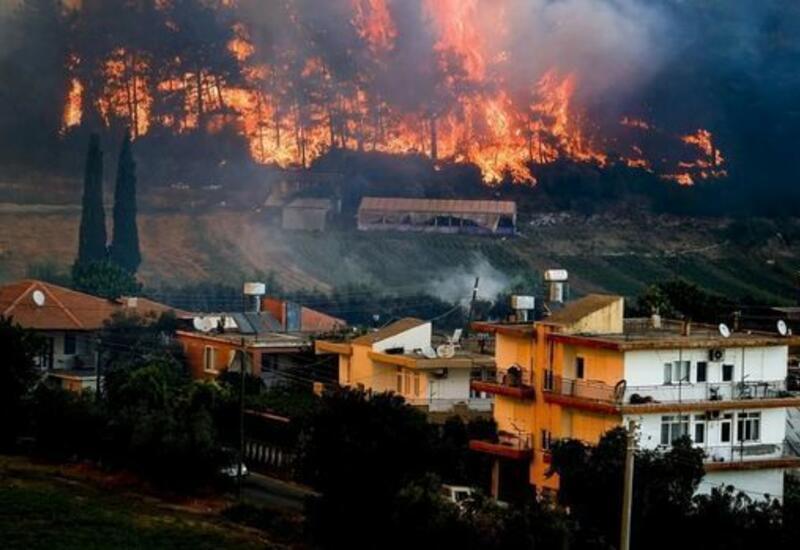 Джахит Багчи сообщил о последней ситуации с лесными пожарами в Турции